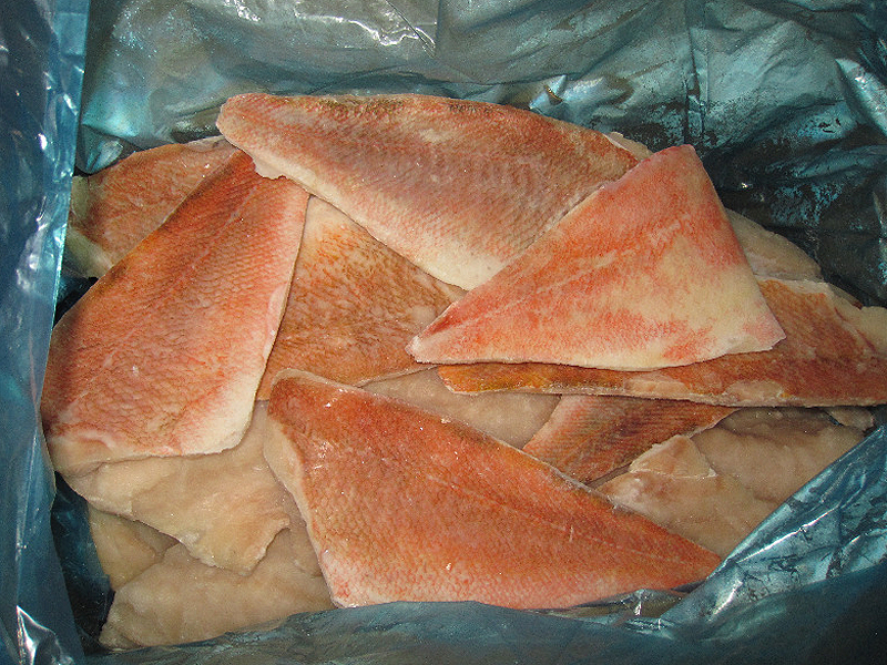 Pop skin on fillets pbi pbo lelant for Ocean perch fish